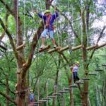 Bali treetop advenure park