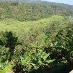 Uitzicht op Bali