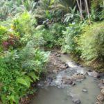 Rivieren op Bali